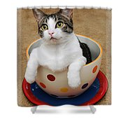 Cup O Tilly 1 Shower Curtain by Andee Design