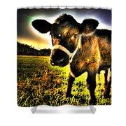 Curious Calf Dark Shower Curtain