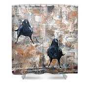Curious Crows  Shower Curtain