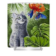 Curious Kiwi Shower Curtain by Carolyn Steele