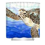 Curious Sea Turtle Shower Curtain