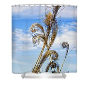 Curled Grasses Shower Curtain