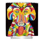 Curly Colorful Retriever Shower Curtain