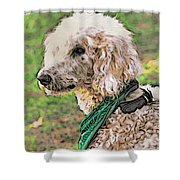 Curly White Dog Shower Curtain