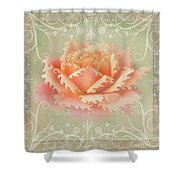 Curlyicue Peach Rose With Flourshis   Square Shower Curtain