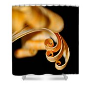 Curlz Shower Curtain