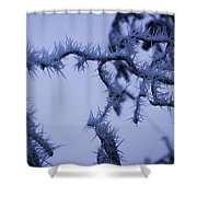 Curves And Spikes Shower Curtain
