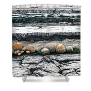 Cushion Bush Dam Shower Curtain