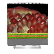 Cut Pomegranate Fruit Shower Curtain