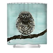 Cute Baby Owl Shower Curtain