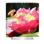 Cute Bee On Camellia Shower Curtain