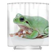 Cute Green Frog Shower Curtain