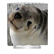 Cute Look 2 Shower Curtain