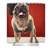 Cute Pug Dog In Vest And Top Hat Shower Curtain by Edward Fielding