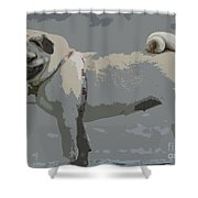 Cute Puggy Dog Shower Curtain