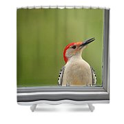 Cw My Crazy Woodpecker Shower Curtain