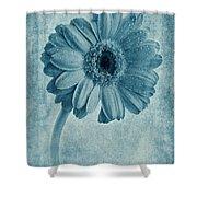 Cyanotype Gerbera Hybrida With Textures Shower Curtain