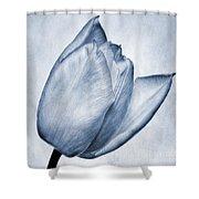 Cyanotype Tulip Shower Curtain