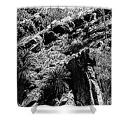Cycads At Cliffs' Edge Black And White Shower Curtain