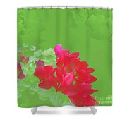 Cyclamen Dream Shower Curtain