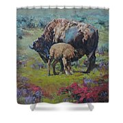 Cycles Shower Curtain