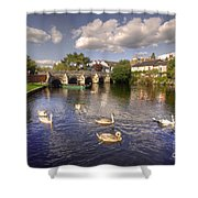 Cygnets At Christchurch  Shower Curtain