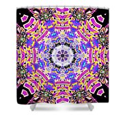 Cymatic Gateway Shower Curtain