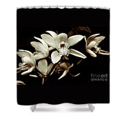 Cymbidium Orchids Shower Curtain