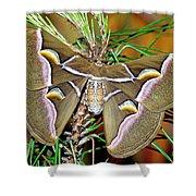 Cynthia Moth Shower Curtain