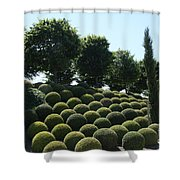 Cypress And Boxwood Garden Shower Curtain