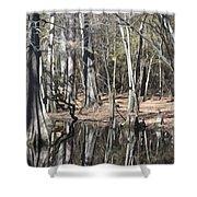 Cypress Bog Shower Curtain