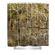 Cypress Branches Shower Curtain