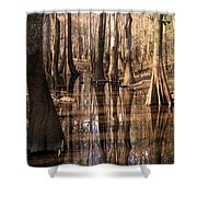 Cypress Hall Shower Curtain