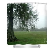 Cypress In The Mist Shower Curtain