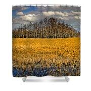 Cypress Marsh Shower Curtain