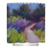 Cypress Passage Shower Curtain