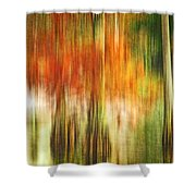 Cypress Pond Shower Curtain by Scott Pellegrin