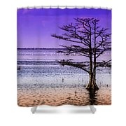 Cypress Purple Sky 2 Shower Curtain