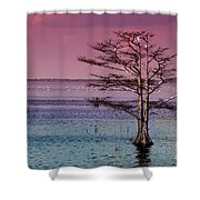 Cypress Purple Sky Shower Curtain