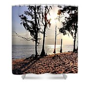 Cypress Shore Shower Curtain