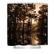 Cypress Sunrise Shower Curtain