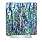 Cypress Swamp Shower Curtain