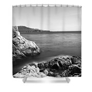 Cypress Tree At The Coast, The Lone Shower Curtain