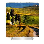 Cypresses Of Toscany Shower Curtain