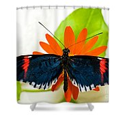 Cythera Butterfly Shower Curtain