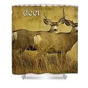 D Is For Deer Shower Curtain
