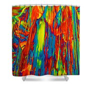 D Mas Gras Shower Curtain