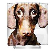 Dachshund Art - Roxie Doxie Shower Curtain