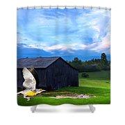 Dad's Favorite Bird Meadowlark Shower Curtain