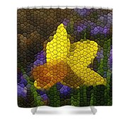 Daffies And Blue Chionodoxas Shower Curtain